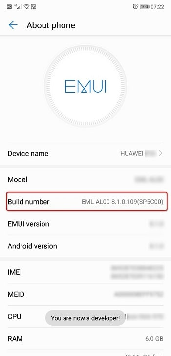 Build Number of Huawei P30/P30 Pro