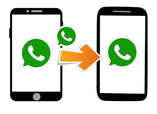 Transfer WhatsApp between Different Accounts